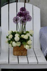 Оригинальные букеты, сезонные цветочные композиции, цветы