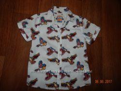 Продам рубашку NEXT для мальчика 3Т