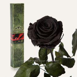живая роза 1 шт. в подарочной упаковке Черный бриллиант не вянет без воды