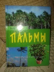 Книга Пальми