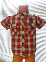 Сорочки в асортименті на довгий та короткий рукав  1-4р.