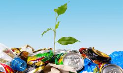 Ищу учредителей-инвесторов для постройки завода по переработке отходов