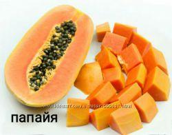 Семена папайя - хлебное или дынное дерево