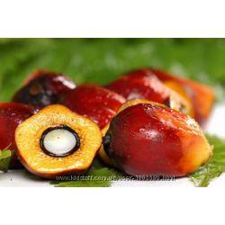 Пальмовое масло, рафинированное от 250 Г