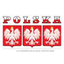 польский язык. носитель польского языка