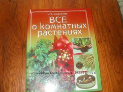 Всё о комнатных растениях О. В. Бердникова