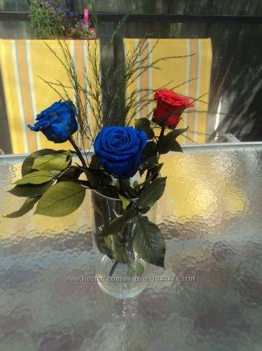#10: Синий сапфир