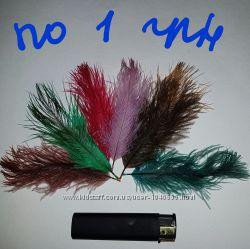 Перья страуса  для рукоделия и декора. Страусиные перья