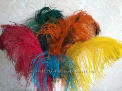 Декоративные страусиные перья