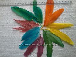Перья цветные декоративные. Тесьма. Перьевая лента