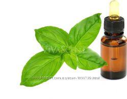 Базиликовое натуральное эфирное масло