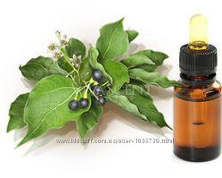 Камфорное натуральное эфирное масло