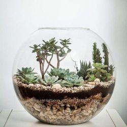 Стеклянные круглая конфетница, флорариум для суккулентов, аквариум