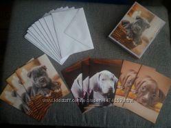 набор двойных открыток с конвертами в оригинальной упаковке