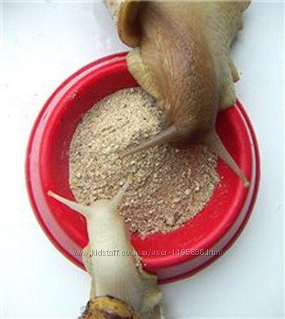Корм для улиток Ахатин, подкормка для улиток зерносмесь  кальций