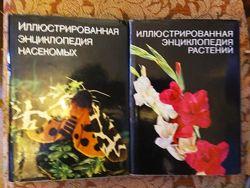 Иллюстрированные энциклопедии на русском языке