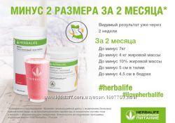 Протеиновые коктейли - Диетическое питание от Компании Herbalife
