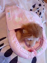 Лежанка для кота, собаки, хлопок, новый, гипоалерген, розовый