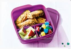 Контейнер  Школьник с разделителями 550 мл фиолетовый, Tupperware