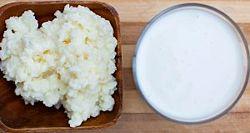 тибетский молочный гриб / закваска для кефира