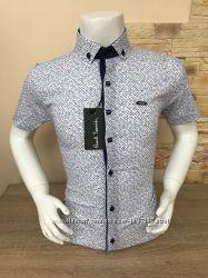 21bfc15d1bcd Рубашка Paul Smith 7 -15 лет с принтом, кнопка, нет глажке, 295 грн ...