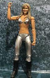 WWE Michelle Mccool фигурки рестлеров рестлинг Jakks