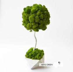 Дерево, торпиарий из стабилизированного мха насыщенного цвета
